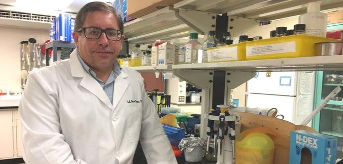 Germina estudio sobre la mitocondrias y cáncer de colon