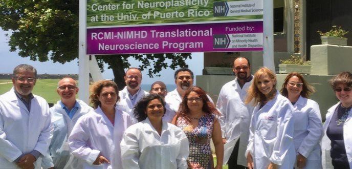 La Neurobiología investiga impacto de estresores ambientales en el sistema nervioso