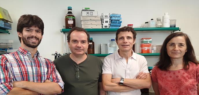 Identificada una molécula clave en el desarrollo de la psoriasis
