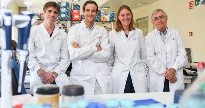 Descifran las claves de la predisposición genética a la leucemia linfática crónica
