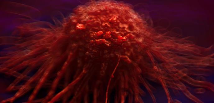 Descubierta una de las piezas clave para tratar el cáncer de páncreas