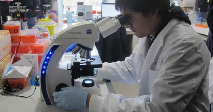 Científicos avanzan en el uso de células madre para enfermedades incurables