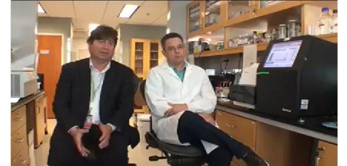 Se prepara el campo científico y molecular de la Hipertensión Arterial en Puerto Rico