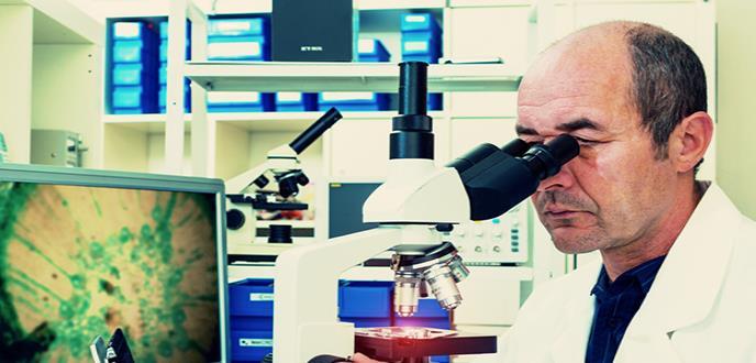 Descubierto un nuevo órgano gigante que no se ve bajo el microscopio