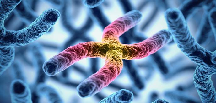 Una investigación revela 44 variantes genómicas asociadas con la depresión