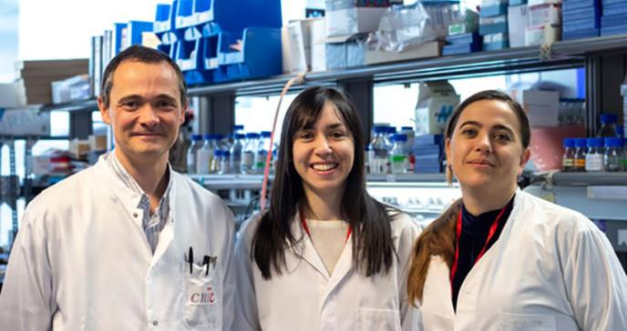 Adiponectina, la hormona que protege a las mujeres del cáncer de hígado
