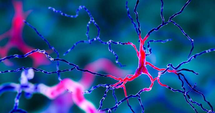 Análisis de sangre de IA predeciría la progresión de la enfermedad neurodegenerativa
