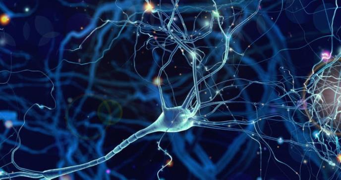 Un anticoagulante oral retrasa la aparición del alzhéimer