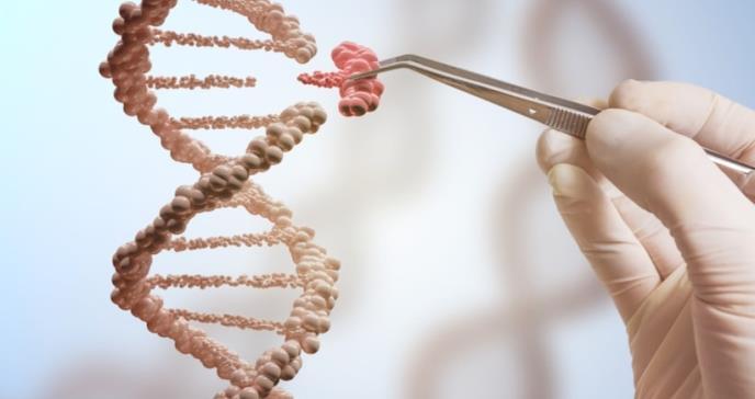 Árbol genealógico médico predeciría riesgos de salud hasta de tres generaciones