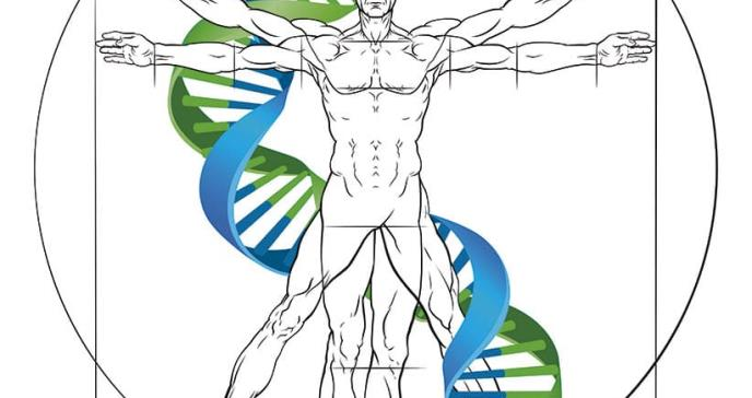 El genoma humano ante la infección del COVID-19
