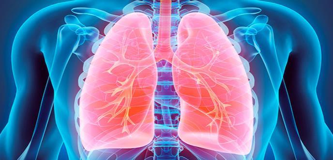 Hallan primeras evidencias de la relación entre el asma y los ácidos grasos