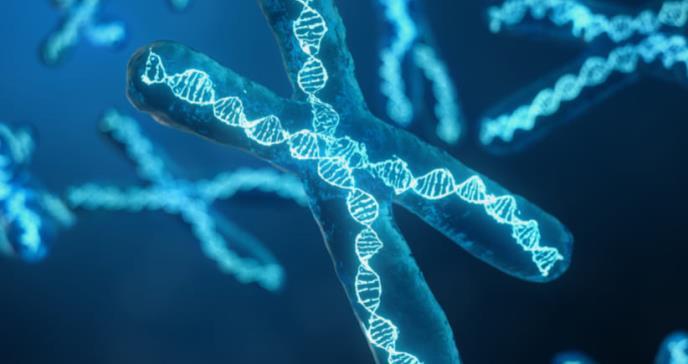Asociados 400 genes con el desarrollo de esquizofrenia