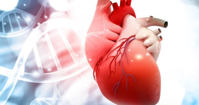 Nuevo tratamiento para el ataque cardíaco