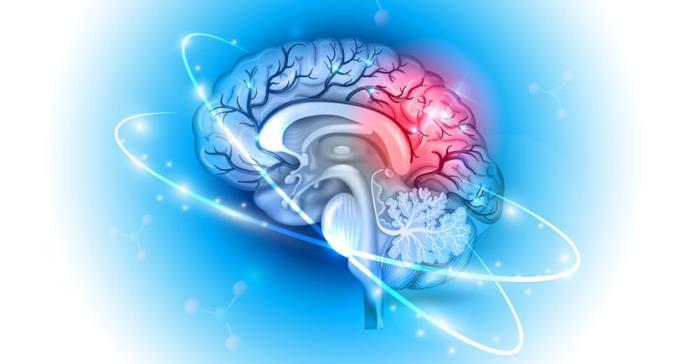 Científicos descubren una forma de frenar el cáncer cerebral más letal