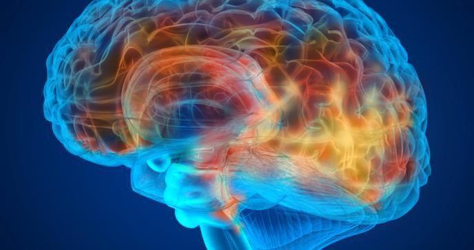 Capacitación sobre la enfermedad de Alzheimer y otras demencias