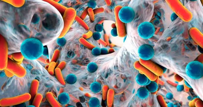 Científicos descubren potente toxina que ayudaría a combatir a las superbacterias
