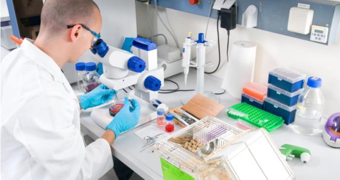 Eliminan un tipo de tumor de páncreas en ratones