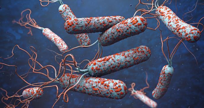 El descubrimiento que evitó millones de muertes por cólera