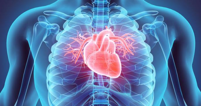 Nueva fórmula para tratar la enfermedad arterial coronaria y periférica