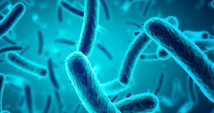 ¿Cuál es la diferencia entre pandemia y epidemia?