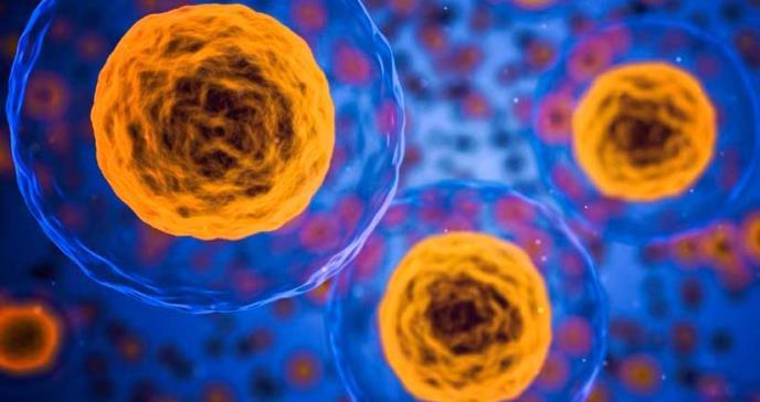 Desarrollan microdispositivos que distinguen las células tumorales de las sanas