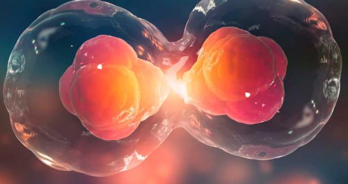 Desarrollan un fármaco inteligente que previene la metástasis del cáncer