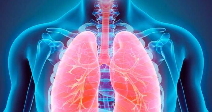 Desarrollan un fármaco proteico para la hipertensión arterial pulmonar