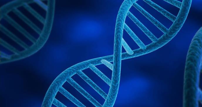 Describen por primera vez las alteraciones genéticas causadas por quimioterapias