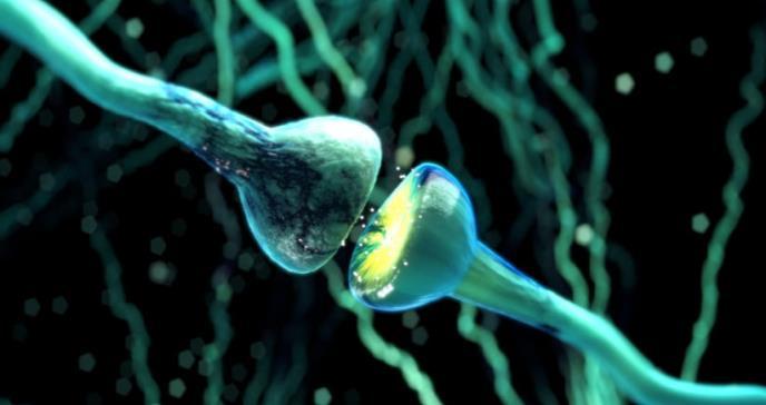 Descubren cinco genes implicados en la aparición de alzhéimer