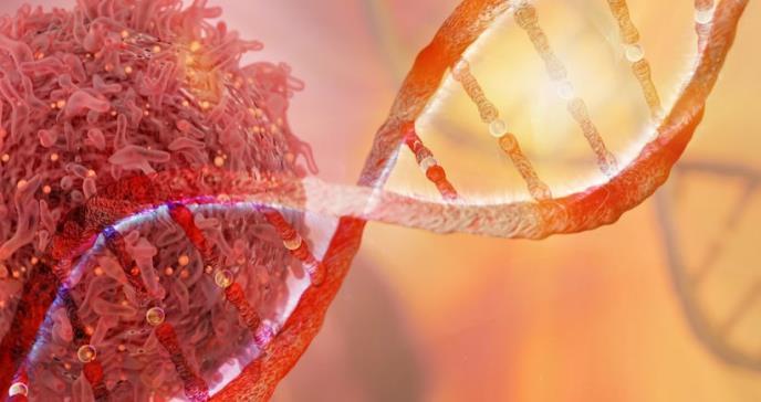 Descubren cómo las células tumorales imitan a las vasculares en los cánceres más agresivos