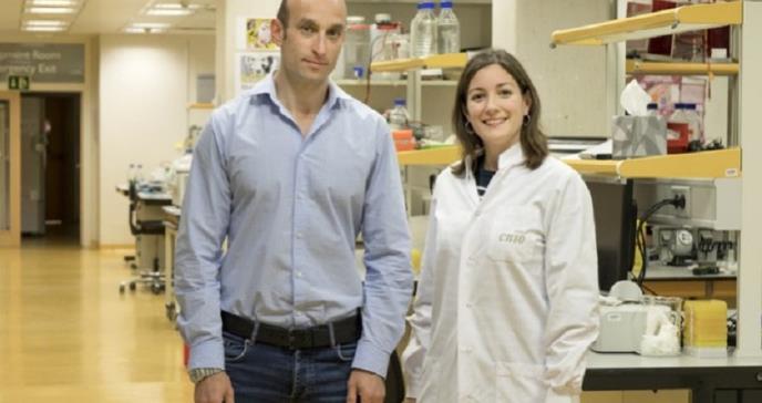 Descubren una protección frente a los efectos secundarios de la radioterapia