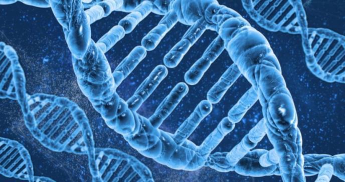 Detectan firma genética común en tres enfermedades cutáneas raras