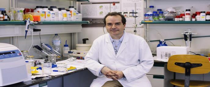 Diseñan el primer fotofármaco para el tratamiento del dolor