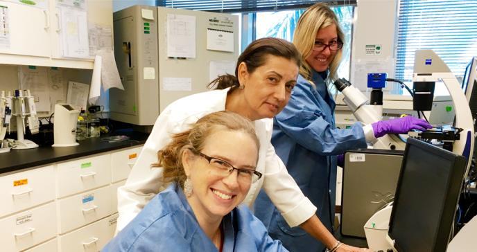 Prueban medicamento contra el daño neurocognitivo en mujeres VIH