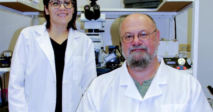 Estudian proteína que da transparencia a las células para el estudio de patologías cerebrales