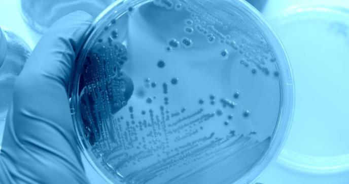 EE.UU. alerta de un misterioso brote de E.coli que ya afecta a 72 personas en cinco estados