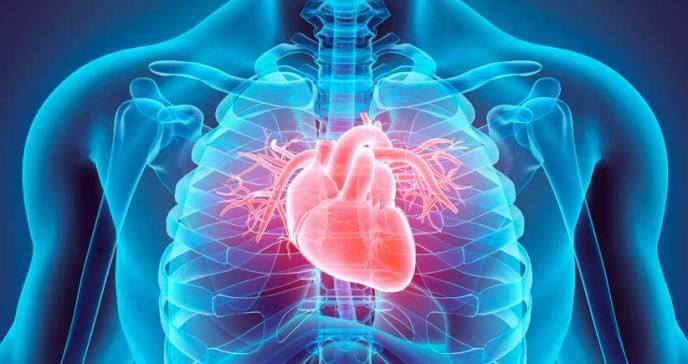 El consumo de chile podría reducir el riesgo de muerte por infarto e ictus