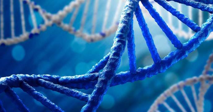 Encuentran daño en el ADN vinculado con aditivo que se usa en plásticos