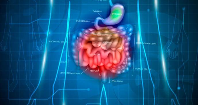Incidencia de la enfermedad inflamatoria intestinal en pacientes pediátricos