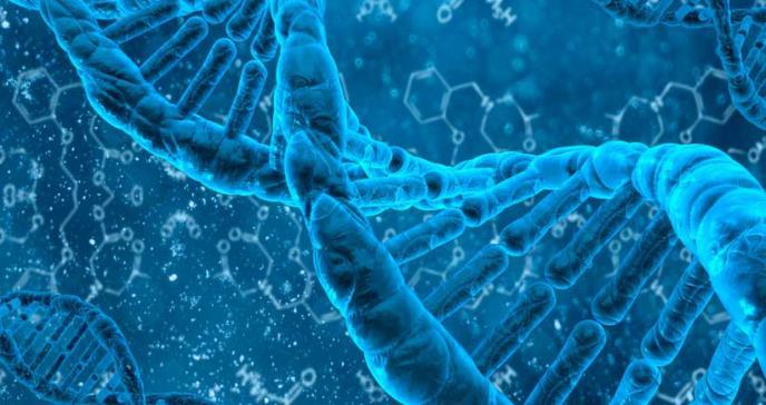 Estudio más grande sobre el genoma africano ayudará a combatir el sesgo racial en los datos médicos