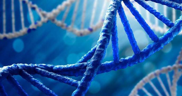 Estudio identifica nuevos vínculos genéticos con afecciones graves de coágulos sanguíneos