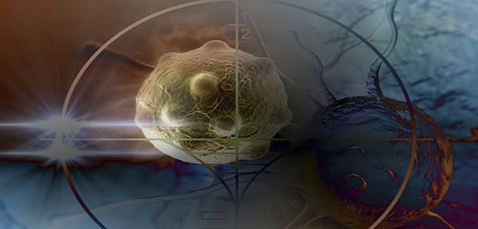 Descritas diferencias en la flora bacteriana del tejido mamario vinculadas con el cáncer