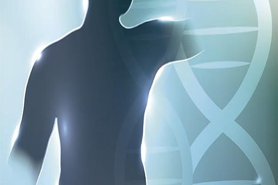 Genética y diabetes mellitus tipo 2