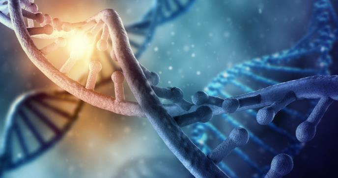 Relación genética entre pacientes crónicos por SARS-CoV-2 y el neandertal