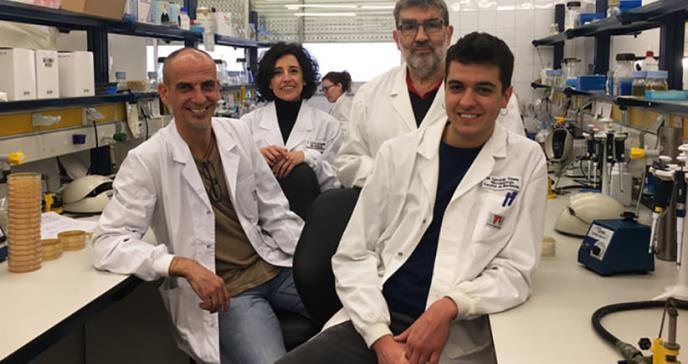 Hallado un nuevo proceso de resistencia a fármacos en bacterias
