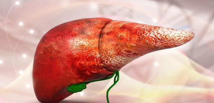 Identifican nuevos determinantes implicados en el desarrollo de hígado graso no alcohólico