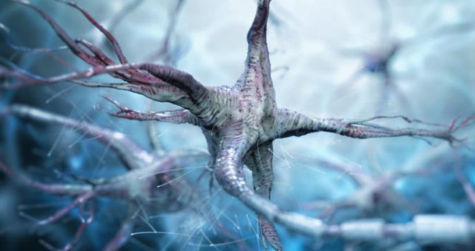Identificadas las principales vías genéticas alteradas en fibromialgia