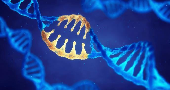 Identifican mutaciones que podrían ser responsables de la esclerosis múltiple en varios miembros de una familia