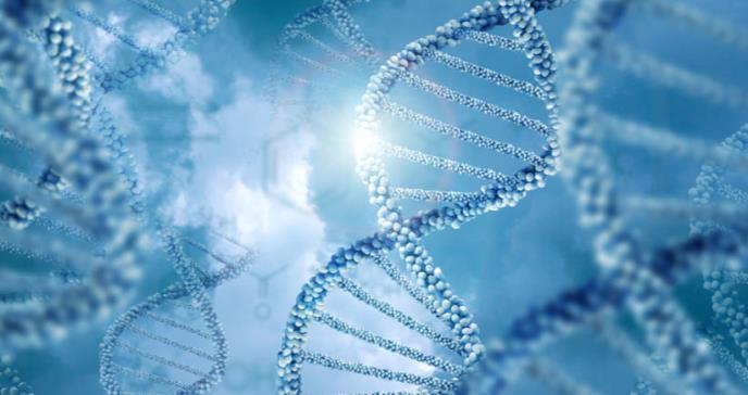 Identifican una variación genética relacionada con el alzheimer en niños