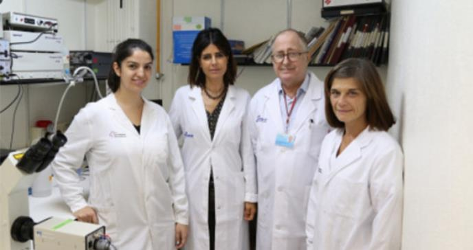 Identifican un mecanismo molecular responsable del envejecimiento del corazón